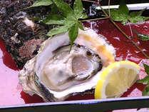 *夏だけの美味≪岩牡蠣≫。ぷりっぷりの食感と濃厚な旨味♪レモンをギュッと絞ってどうぞ!