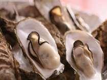 【学割☆格安】9,800円から!焼牡蠣・牡蠣フライ&牡蠣海老雑炊付き会席♪《60分間食べ放題プラン》