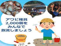 【3月26日ご宿泊の方限定】石鏡の海女さんとアワビ稚貝放流体験ツアー付!ファミリー大歓迎プラン♪