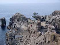 【観光地:東尋坊】波の浸食によって荒々しくカットされた岩肌は有名。天然記念物にも指定れています。