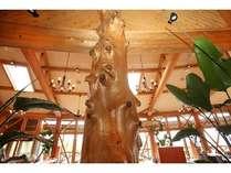 ダイニング四季樹齢100年以上の吉野杉