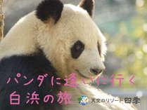 【プラン】パンダに逢いに行く白浜の旅
