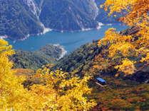 【~紅葉の見頃~】立山黒部アルペンルートは山頂より紅葉し始め、9月下旬~11月上旬が見ごろです。