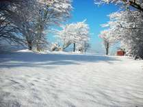 ある冬の日のキャンプ場