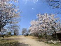 【熊本県民限定】期間限定で1000円OFF!温泉付き離れコテージでゆったり過ごそう