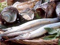 *新鮮魚介(一例)*季節の旬の食材を使用!色んな料理法で召し上がれ♪