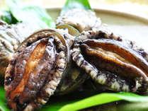 【料理】貝の王様といわれるあわびをご賞味あれ!
