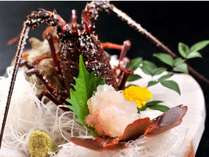 【伊勢海老お造り】プリップリの食感と独特の甘みが美味しい