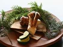 秋の味覚の王様『松茸』料理が味わえます