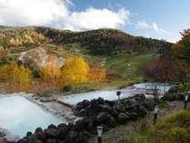 絶景露天風呂「こまくさの湯」ダケカンバの黄色が美しい