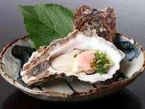 鳥取の夏の旬を味わうなら天然の「岩がき」がお奨め!