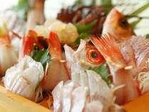 伊勢海老が2本も入った駿河湾深海魚や地魚のお造りの特大舟盛り