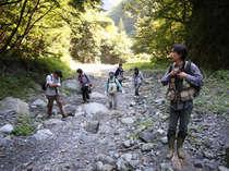 【自然体験】新緑の山トレッキングプラン