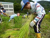 【家族・自然体験・山村留学】親子で山村留学体験ツアー