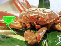 【平日限定(日~金)】タグ付き!松葉蟹と香住ガニの食べ比べ!【どっちが好き?】