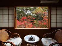 眼下に紅葉の絨毯が広がります。