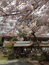 桜の香り漂う外観