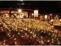 冬期イルミネーション 日本庭園(石心亭前)