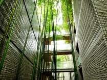 【竹回廊】ロビー棟と客室棟を結ぶ回廊。日中は陽の光に竹の葉がきらめき、風にそよいで清々しい空間に