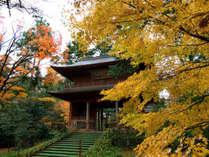 ●大乗寺(秋)夜景を見に来るお客様は多いです。