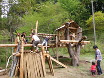 ツリーハウスは子供たちの遊び場