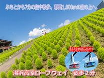 【湯沢高原】高山植物や日本最大級のロックガーデン、 森から森へと移り渡るジップラインが大人気