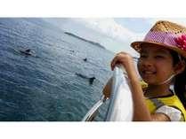 夏休み♪期間限定◆イルカウォッチング乗船券・2食付◆【あわび・地魚盛り合せ・熊本産黒毛和牛ステーキ】