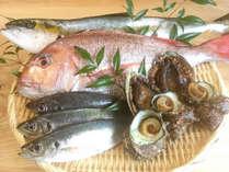 【時期限定!海の幸プラン】高級食材『あわび』×高級魚『のどぐろ』≪特典付≫