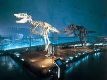 ●恐竜博物館【入場券付】プラン●お子様大興奮!≪恐竜王国・福井≫で楽しい思い出を作ろう♪