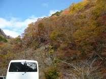 バスで行く 『奥秩父中津川渓谷の紅葉』 地元の食材と旬を味わう旅プラン