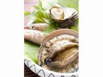 【旬の地魚&アワビ】新鮮魚介と贅沢アワビ☆を堪能♪