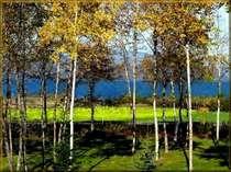 当ペンション玄関前から白樺越しに望める屈斜路湖のパノラマ