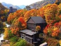 自然あふれる定山渓の紅葉は圧巻。宿の周りも鮮やかに彩られます。