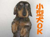 小型犬同宿OKです♪