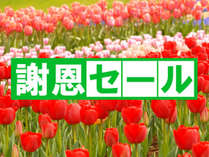 【1~2月平日限定】冬の謝恩プラン★気ままな素泊り4,000円→3,500円