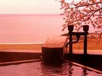 【春】桜と海がきれいな、「渚」春の客室露天風呂風景。