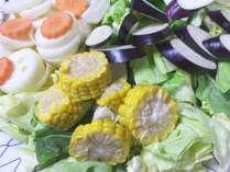 【BBQ】バーベキューの野菜は自家農園で栽培したものをしようしております