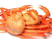 紅ズワイガニとは一線を画した、ブランド食材「香住ガニ」をご賞味ください
