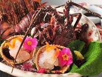 伊勢海老造り★ぷりっぷりの食感と甘みが美味しい♪