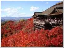 ◆秋の清水寺◆
