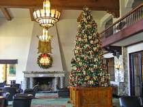 【メインロビー】クリスマスムードを盛り上げる大きなツリー♪