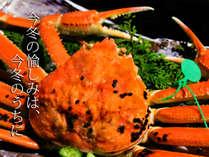 ≪じゃらん限定≫【ALLブランド活カニ松葉ガニ】蟹1杯+【アーリー&レイト&ワンドリンクサービス特典】