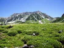 ●周辺観光地/立山黒部アルペンルート室堂平(夏)