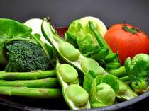 料理に使う野菜は契約農家から直送 取れたて新鮮の有機野菜をどうぞ