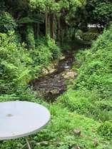 施設のわきに流れるせせらぎの川 マイナスイオン癒し空間