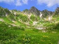 雲上のお花畑千畳敷カール