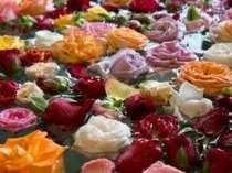 ◆憧れのバラ風呂でお姫様気分◆