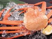 旨みが凝縮された蒸し蟹、芳醇な香りのカニ味噌をご賞味あれ。