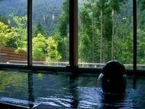 内湯は源泉かけ流しのつるつるなお湯を浴びながら、大きな窓越しに豊かな光が入ります