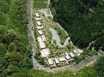 原生林と渓谷に佇む合歓のはな(航空画像)